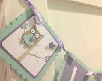 Owl name banner, Owl banner, birthday banner, name banner, baby shower banner, owl sign