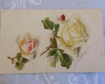 Beautiful Vintage Rose Postcard 1918