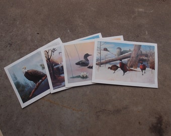 Vintage Loon Art Prints Etsy