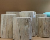 Tree STUMP Coffee Table Grouping Modular White Washed