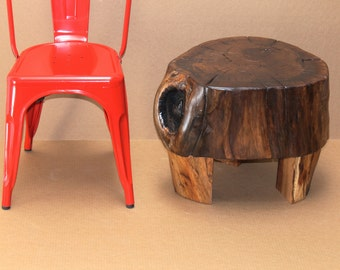 Walnut Stump Table Turtle Baby