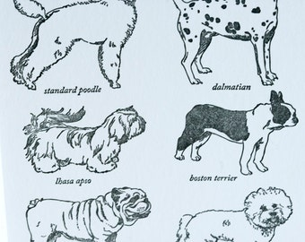 SALE - Letterpress Non-Sporting Dog Breed Card - - 60% off