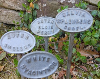 Set of four botanical garden label stakes