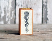 Botanical Candleblock: No. 3, Smokestack Fig. 14 - by Peg and Awl