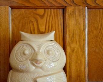 vintage ceramic owl cookie jar