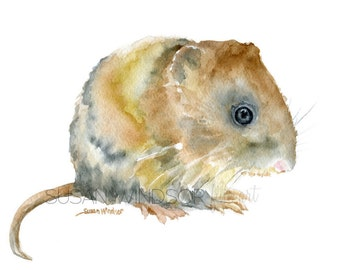 Vole Watercolor Painting Giclee Reproduction - 4 x 6 in -- Nursery Art  -- Fine Art Print