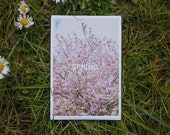 """Postcard """"SPRING"""" inspirational quote"""