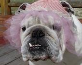 ENGLISH BULLDOG Reversible Hat Pink peach Roses floral print Spring dog hat ruffles, bully girl dog hat