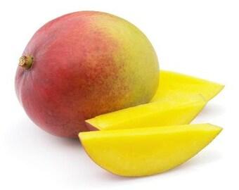Mango Detangler - Natural Hair Conditioner, Leave-In Conditioner, Curly Hair Products, Natural Hair Care