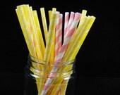 Pink Lemonade Mix Paper Straws 2, Retro Paper Straws, Pink Lemonade Party, Girls Party, Mason Jar Straws - Quantity 24 Paper Straws