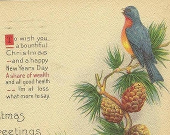 Bluebird on Pine Branch with Pine Cones Vintage Christmas Postcard – Bright and Colorful Stecher Litho 1922