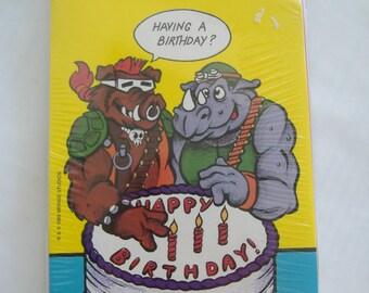 SALE Twelve Assorted TMNT Birthday Cards, 1989, Unopened