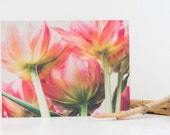 "farbenfroh - photo-encaustic art - 30x40cm (12x16"") pink flower colorful flora tulip encaustic rose summer square"