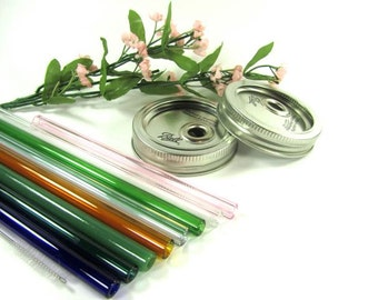 Regular Mouth Mason Jar Lid with Standard Colored Glass Straw- Customize yourGlass Drinking Straw Length, Color and Style
