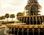 Charleston SC Photography  Pineapple Fountain in Waterfront Park - South Carolina Photos,