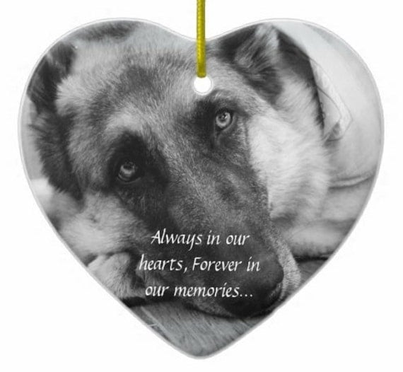 Custom Pet Memorial Ornament With Photo