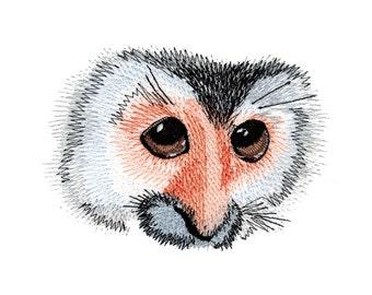 Squirrel Monkey Eyes Embroidered Flour Sack Hand/Dish Towel
