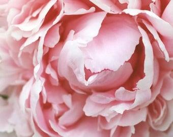 Peony Fine Art Photography. Pink Flower Wall Art. Abstract Flower Art. Nature Photography, Flower Photography, Flower Print, Floral Photo