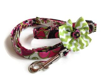 Vera Floral Dog Collar Leash Set size Small