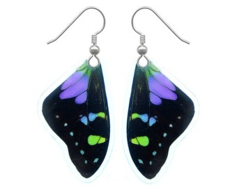 REAL butterfly wing earrings - Graphium Weiskei top wing