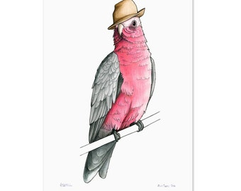 Galah in a Trilby - A3 Birds in Hats Art Print