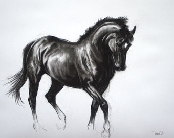 Equine art horse art LE mounted art print horse gift horse lover gift wall art 'Black IV' from an original charcoal sketch drawing