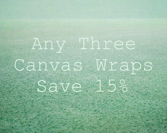 Three Canvas Set, Custom Canvas Set, Choose Your Own, Nature Photography Set, 3 Canvas Photograph Set, Canvas Art Set, Nature Wall Art