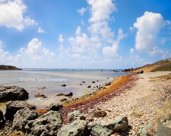ocean landscape color print, still life photography, ocean, rocks, oceanscape, caribbean, skies