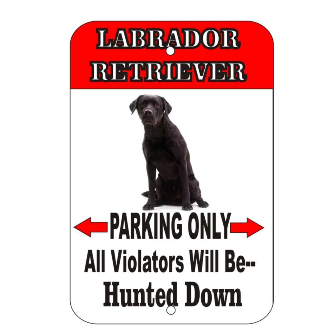 Labrador Retriever Sign, Black Lab Sign, Chocolate Lab. Temple Signs. Fiesta Signs Of Stroke. Basketball Foul Signs. Chemical Hazard Signs Of Stroke. Aum Signs. Food Cartoon Signs. Renal Hydatid Cyst Signs Of Stroke. Pointless Signs