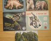 Vintage Science Books - 5 Puffin Picture Books, Extinct Animals, Animals of North America, Wonders of Animal-Life, About a Motor Car, Trees