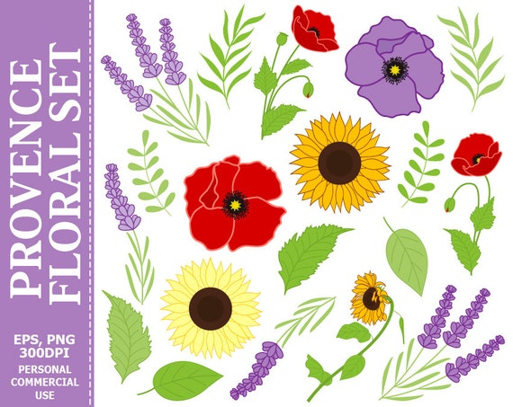 Digital Provence Flowers Clip Art Lavender Poppies