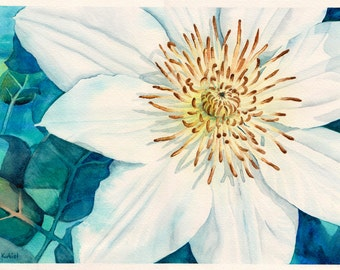 Original watercolor painting white Clematis flower 10inx14in