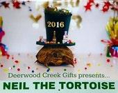 Neil the Tortoise 2016 Calendar, 2016 Calendar, Tortoise Calendar, Turtle Calendar
