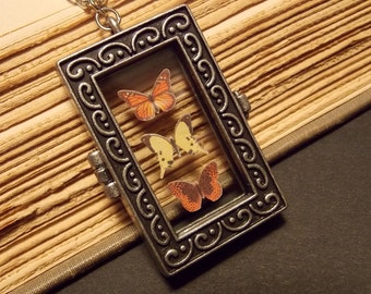 Butterfly Display Necklace