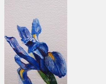 Blue Iris Watercolor