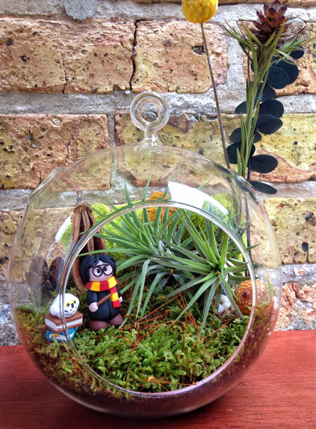 Harry Potter Air Plant And Moss Terrarium A Unique Birthday Or  # Terrarium Dangle