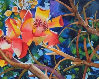 NEW! Art Original Watercolor Painting of CANNONBALL FLOWERS