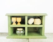 Sage Green Shelf - CD Rack - Country Chic Home Decor - Upcycled