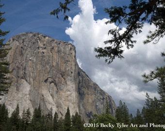 Yosemite Valley, El Capitan,  Fine Art Photo Print