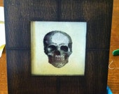 Victorian Human Skull Study Cross Stitch Pattern 12 Colors Antique Engraving PDF