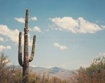 Desert Landscape - Photographic Print - Saguaro, native, southwest, american, Arizona, blue, wild, wanderlust, travel, brown, mountains