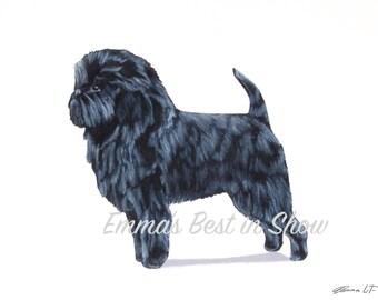 Affenpinscher Dog - Archival Fine Art Print - AKC Best in Show Champion - Breed Standard - Toy Group - Original Art Print