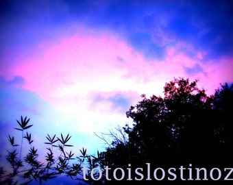 Nature Photograph Florida Sky in the Evening DIGITAL DOWNLOAD
