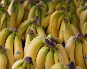 Canvas Gallery Wrap Art or Photo Print - Yellow Bananas, Kitchen Photos, Farmers Market, Fruit Photos