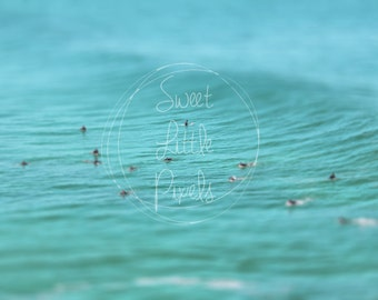 Surfers at Bondi