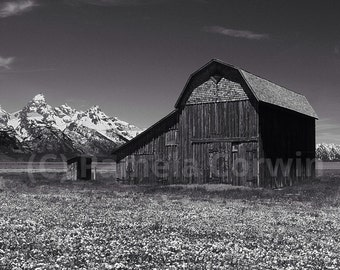 "Jackson Hole photo: Mormon Row barn with the Tetons photo 11x17"" Wyoming art"