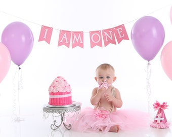 I am One banner, Birthday decorations, Banner, Birthday Banner, Happy Birthday Banner, Happy First Birthday Banner