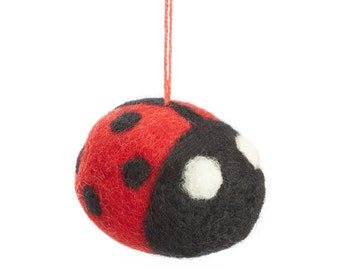 Dangling Ladybird
