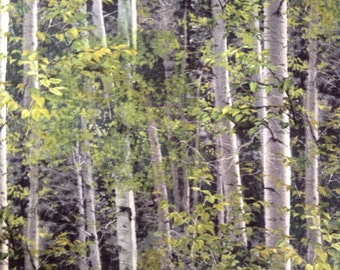 One Half Yard of Fabric Material  - Birch Tree Forest