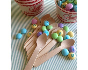 Mini Disposable Wooden Spoons 24 Pack
